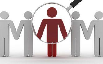 Employment Screening